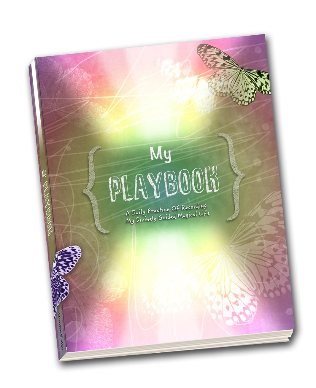PlaybookCoverSM tilt